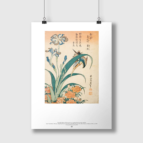 martin-pescatore-iris-e-garofani_1.jpg